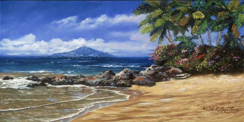 MauiVision